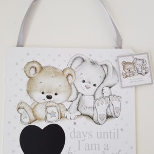 New Baby Arrival Big Sister / Brother Daily Count Down Wooden Wall Hanging Plaque (SKU130)