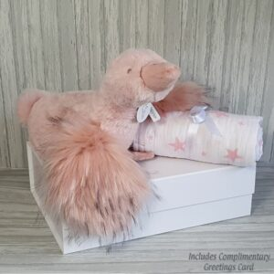 Fancy Goose Gwen Plush Toy & Swaddle Baby Gift / Children's Gift Set & Complimentary Greeting Card (SKU617)