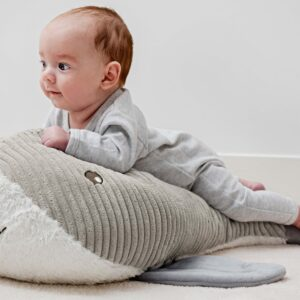 Giant Waylon Whale Plush Soft Toy (SKU612)