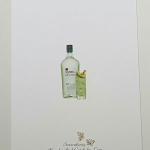 Personalised Mojito Birthday Card Son Any Relation Any Tipple